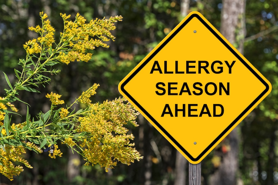 Caution Sign - Allergy Season Ahead.