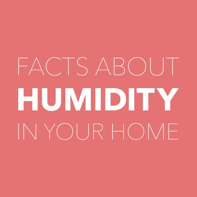 Humidity Facts